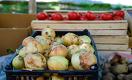 Экспорт фруктов и овощей из Узбекистана в РФ вырос на 42%, несмотря на пандемию
