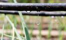 Государство будет субсидировать обеспечение водой приусадебных земель