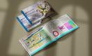 В Узбекистане провели исследование стартап-экосистемы Uzbekistan Startup Indicator 2020